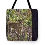 Dingo In The Wild V3 Tote Bag