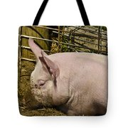 Dirty Piggy Tote Bag