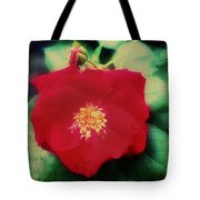 Dirty Rose Knows Tote Bag by Bill Cannon