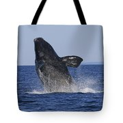 Discovering Another Dimension Tote Bag