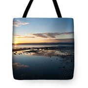 Discovery Park Reflections Tote Bag