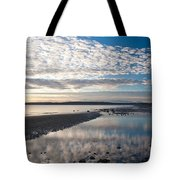 Discovery Park Tidepools Tote Bag