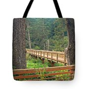 Discovery Trail Bridge Tote Bag