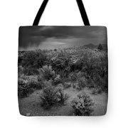 Distant Shower Tote Bag