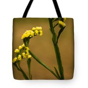 Distinctive Look Tote Bag