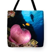 Diver And Magnificent Anemone, Fiji Tote Bag