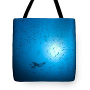 Diver And School Of Fish In Blue Water Tote Bag