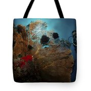 Diver And Sea Fan At Liberty Wreck Tote Bag