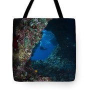 Diver At Boo Windows In Raja Ampat Tote Bag