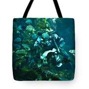 Diver Feeding Fish Tote Bag