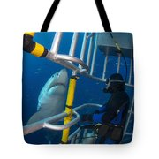 Diver Observes A Male Great White Shark Tote Bag