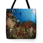 Diver Over Reef Seascape, Indonesia Tote Bag