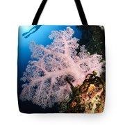 Diver Over Soft Coral Seascape Tote Bag