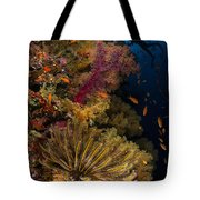 Diver Swims By Soft Corals And Crinoid Tote Bag