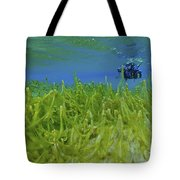 Diver With Fluorescent Green Algae Tote Bag