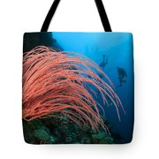 Divers And Whip Coral Tote Bag