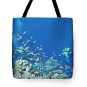 Divers Enjoy The Beauty Of The Reefs Tote Bag