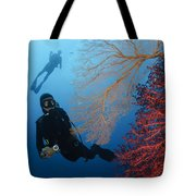 Divers Swimming By Sea Fans, Indonesia Tote Bag