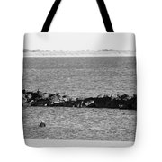 Diving Coney Island In Black And White Tote Bag