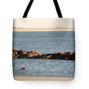 Diving Coney Island Tote Bag