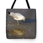 Do I Know You Tote Bag