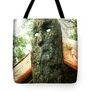 Do Not Look Into The Eyes Tote Bag