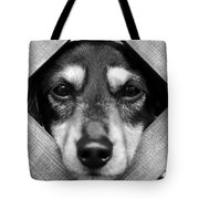 Doberman Puppy In Fence Tote Bag