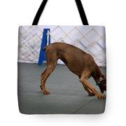 Dobie Retrieving Dumbbell Tote Bag