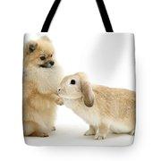 Dog And Rabbit Tote Bag