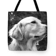 Dog Black And White Portrait Tote Bag