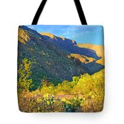 Dog Canyon Nm Oliver Lee Memorial State Park Tote Bag