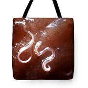 Dog Hookworm Tote Bag