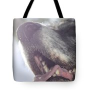 Dog In Backlight Tote Bag