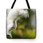 Dog Jumps Tote Bag