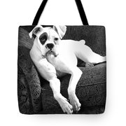 Dog On Couch Tote Bag