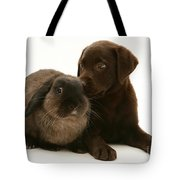 Dog Pup With Rabbit Tote Bag by Jane Burton