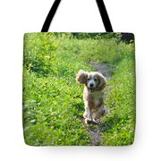 Dog Running In The Green Field Tote Bag