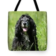 Dog Sitting On The Green Grass Tote Bag