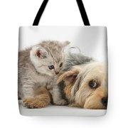 Dog Surrendering To Kitten Tote Bag