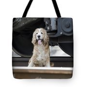 Dog Under A Train Wagon Tote Bag