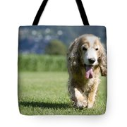 Dog Walking On The Green Grass Tote Bag