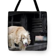 Dog Walking Under A Train Wagon Tote Bag