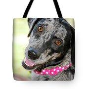Doggone Cute Tote Bag
