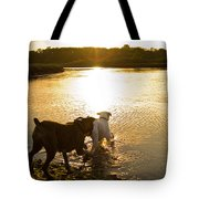 Dogs At Sunset Tote Bag by Stephanie McDowell
