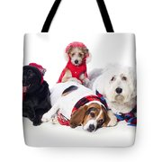 Dogs Wearing Winter Accessories Tote Bag