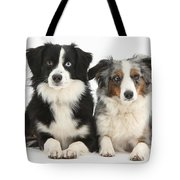 Dogs With Different-colored Eyes Tote Bag