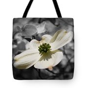Dogwood Black And White Tote Bag