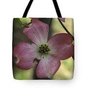 Dogwood Blossom Tote Bag