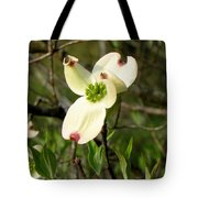 Dogwood Blossome Tote Bag