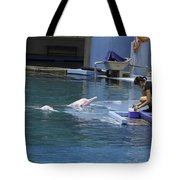 Dolphin And Trainer At The Underwater World In Sentosa In Singap Tote Bag